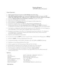 picturesque resume example professional summary as sap and comely