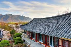 15 Reasons Why You Should Visit <b>South Korea</b> at Least Once in ...