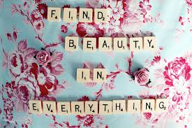 Beauty In Everything Quotes. QuotesGram