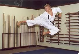 martial arts  teen essay  teen ink martial arts