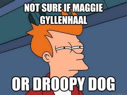 NOt sure if Maggie Gyllenhaal Or Droopy Dog - Futurama Fry - quickmeme via Relatably.com