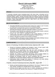 resume templates professional report template word 2010 resume templates professional resume format examples resume examples resume inside professional resume template professional