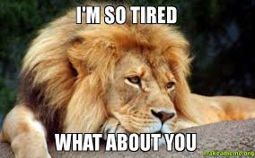 I'M SO TIRED WHAT ABOUT YOU - Confession Lion | Make a Meme via Relatably.com