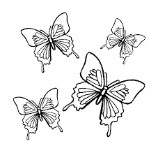 Small Picture butterflies coloring pages to print Techfixusacom