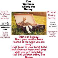the waltham abbey pet nanny waltham abbey pet services yell