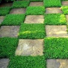 Garden Tiles Rustic and <b>Artificial Grass</b> | Plantas artificiales | <b>Pasto</b> ...