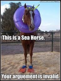 Funny-Horse-Memes-01.jpg via Relatably.com