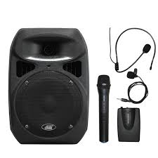 sound system wireless: audios awphl w dual channel wireless microphone portable pa system