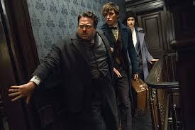 Resultat d'imatges de fantastic beasts and where to find them