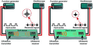 <b>A lab-on</b>-chip ultrasonic platform for real-time and nondestructive ...