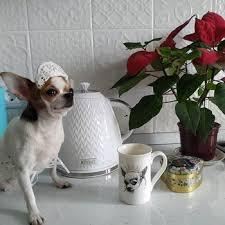 <b>Чайник электрический Kitfort KT-681</b> купить в интернет-магазине ...