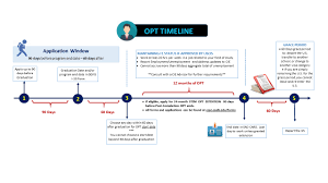 optional practical training opt opt timeline 2017 jpg when to apply