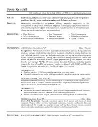 ideas about Objective Examples For Resume on Pinterest           ideas about Objective Examples For Resume on Pinterest   Resume Objective  Resume Objective Examples and Free Downloads