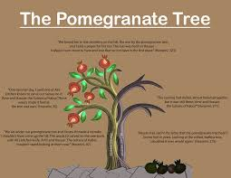 response to literature a pope an important symbol in the kite runner the pomegranate tree