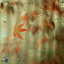 Image result for باران