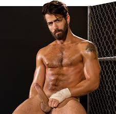 RagingStallion We Love Nudes Adam Ramzi is what characterizes porn studio RagingStallion. Hes manly hairy with thick beard muscle body big cock and on top of that.