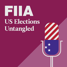 US Elections Untangled