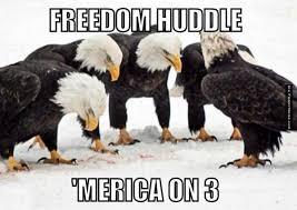 Animal memes - Freedom huddle | FunnyMeme.com via Relatably.com