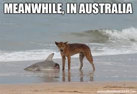 Weekend Aquarium Meme Roundup | AquaNerd via Relatably.com