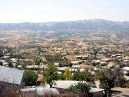 Lice'de en yüksek 'evet', 1 Kasım'ı boykot eden köyden