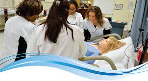 Professional Nursing Program   Largo Medical Center   Largo, FL