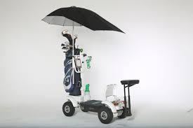 Image result for skate golf caddy