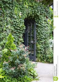 Vine covered building with <b>flowers</b> and wild <b>roses</b> and open <b>french</b> ...