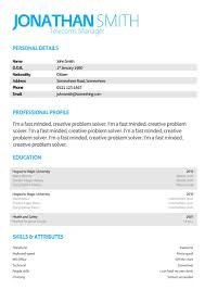 template for cv microsoft word   fancy page border designs  resume    professional cv template