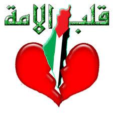 فلسطين الصمود Images?q=tbn:ANd9GcRwfLdyOw2oaxWG-Dzt3QroYkNdc34SXYg4qpV5WI4RCD4UGo2j