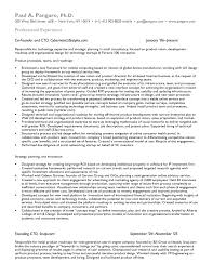 resume examples research analyst resume sample resume for smlf research analyst template for research resume template