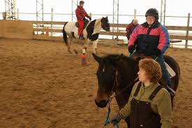 strive u helps graduates overcome challenges living working crystal stover the owner and instructor at it takes two farm in windham guides julie jermann on bam in
