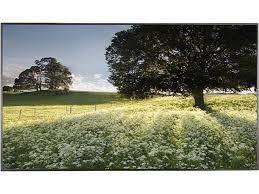 "<b>LG 75UH5C</b> 75"" Ultra HD Commercial Display - Newegg.com"
