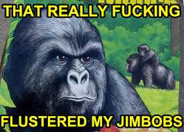 THAT REALLY F✡✞KING FLUSTERED MY JIMBOBS - Memerial.net via Relatably.com
