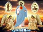 Image result for jacarei apparitions