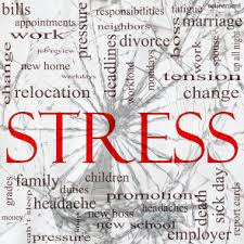 known causes and effects of stress  your medical stop stress effects