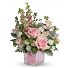 New <b>Baby Flowers</b> and Bouquets | Montreal Delivery | Terrafolia