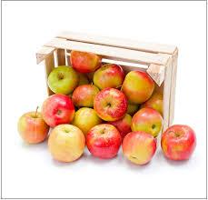 Znalezione obrazy dla zapytania rozdajemy jabłka