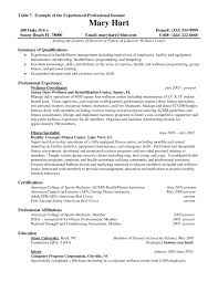 sample resume format for experienced it professionals sample resume format for experienced it professionals 100 sample resumes by resume format sample resumes