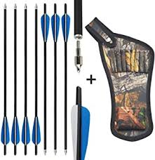 NGL Store - Hunting Arrows / Arrows & Bolts: Sports ... - Amazon.ca