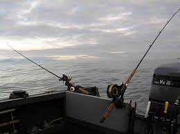 Image result for boat motor trolling pics