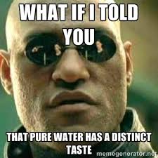 what if i told you that pure water has a distinct taste - What If ... via Relatably.com