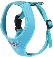Купить <b>Шлейка для собак Rukka</b> Mini comfort голубой 32см 30 ...