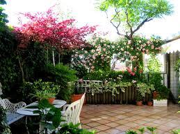 Risultati immagini per terrazzo fiorito