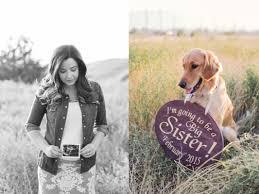 dog walking flyers ideas autoblogger announcing pregnancy dogs cute dog pregnancy dog walking flyers ideas