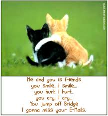 Friendship | Funny | Pinterest