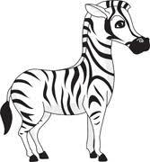Image result for clipart Zebra