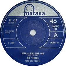 Image result for Troggs With a Girl Like You images