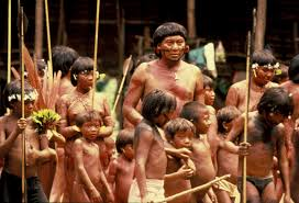 case study yanomami and the evolution of a culture indigenous case study yanomami and the evolution of a culture