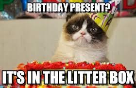 Birthday Present? - Grumpy Cat Birthday meme on Memegen via Relatably.com