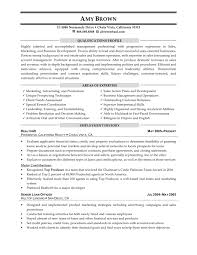 marketing and s consultant resume